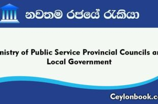 Government Jobs-Ministry of Public Service Provincial Councils and Local Government